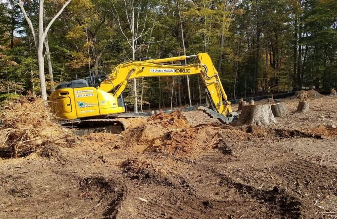 Land Clearing-Fayetteville Tree Trimming and Stump Grinding Services-We Offer Tree Trimming Services, Tree Removal, Tree Pruning, Tree Cutting, Residential and Commercial Tree Trimming Services, Storm Damage, Emergency Tree Removal, Land Clearing, Tree Companies, Tree Care Service, Stump Grinding, and we're the Best Tree Trimming Company Near You Guaranteed!