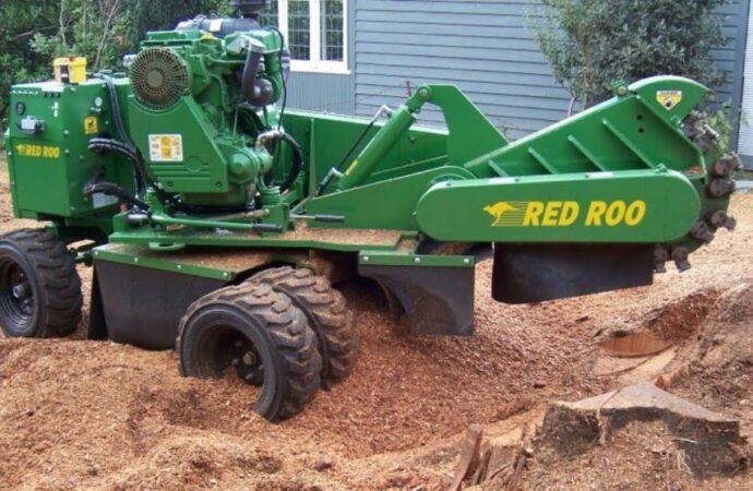 Stump-Grinding-Fayetteville Tree Trimming and Stump Grinding Services-We Offer Tree Trimming Services, Tree Removal, Tree Pruning, Tree Cutting, Residential and Commercial Tree Trimming Services, Storm Damage, Emergency Tree Removal, Land Clearing, Tree Companies, Tree Care Service, Stump Grinding, and we're the Best Tree Trimming Company Near You Guaranteed!