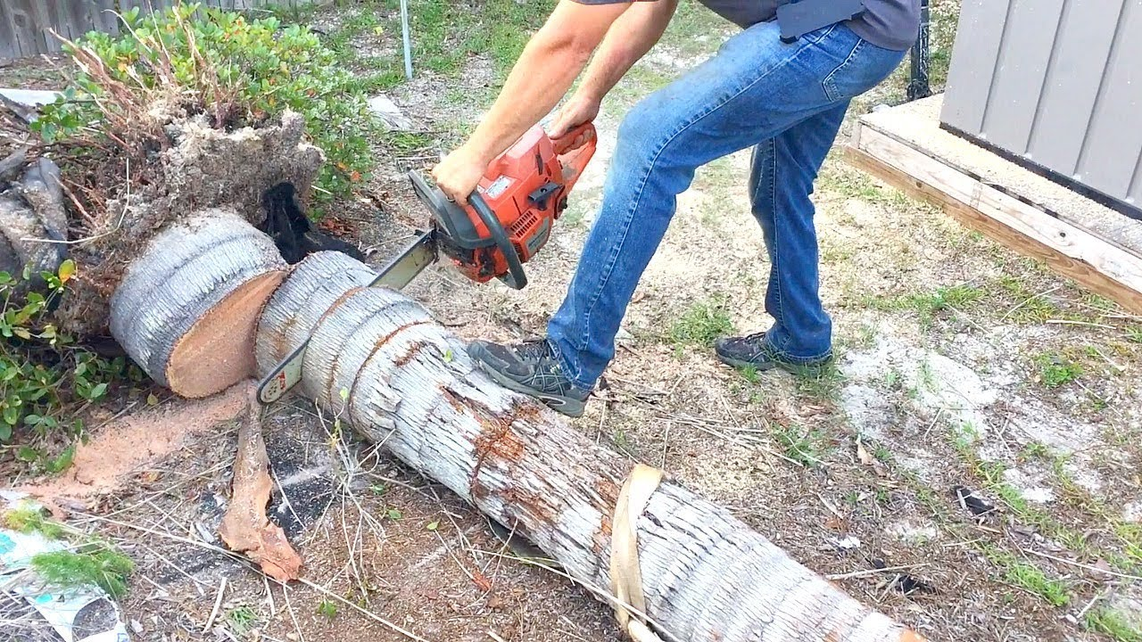 Eastover-Fayetteville Tree Trimming and Stump Grinding Services-We Offer Tree Trimming Services, Tree Removal, Tree Pruning, Tree Cutting, Residential and Commercial Tree Trimming Services, Storm Damage, Emergency Tree Removal, Land Clearing, Tree Companies, Tree Care Service, Stump Grinding, and we're the Best Tree Trimming Company Near You Guaranteed!
